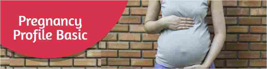 Pregnancy Profile Basic